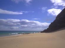 Windwall Playa Sotavento