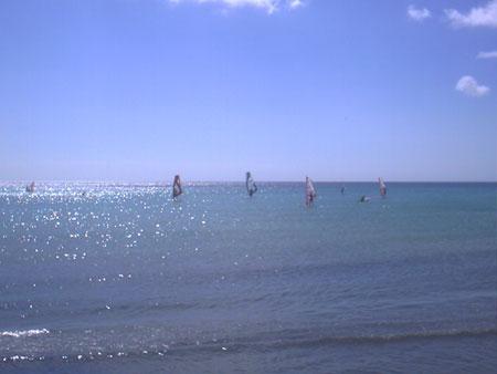 Windsurfer bei Playa Sotavento